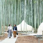 3/28(土)オープン!アニマルグランピング「THE BAMBOO FOREST」